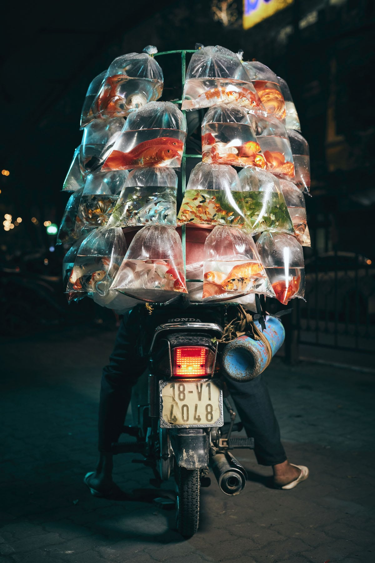 Homme transportant du poisson sur un scooter au Vietnam
