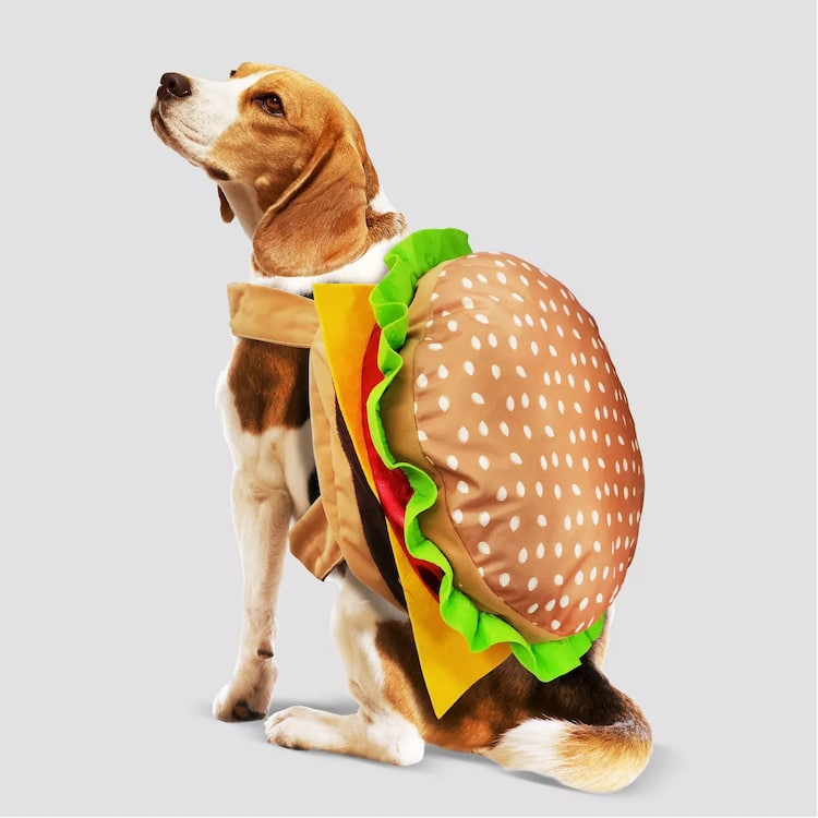 Costume d'Halloween Chat et Chien Hamburger